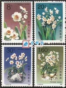 T147 水仙花 邮票